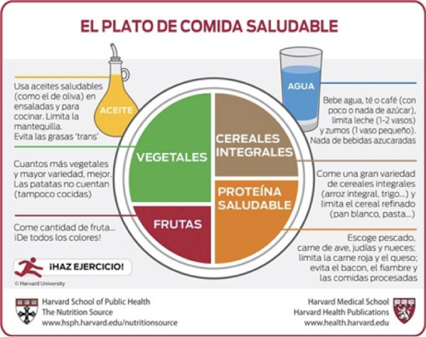 platosaludable